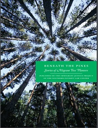 Beneath the Pines